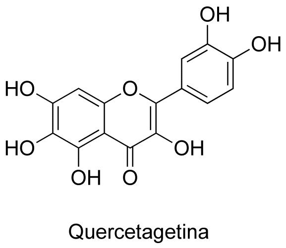 Quercetagetina