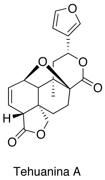 Tehuanina A