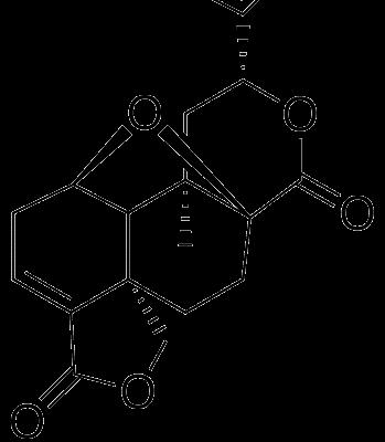 Tehuanina B