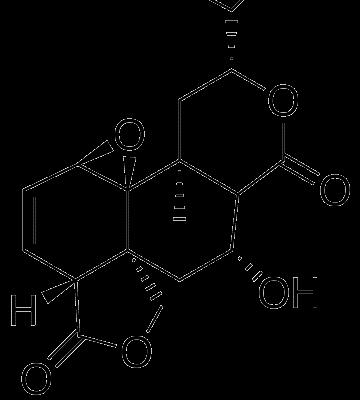 Tehuanina E