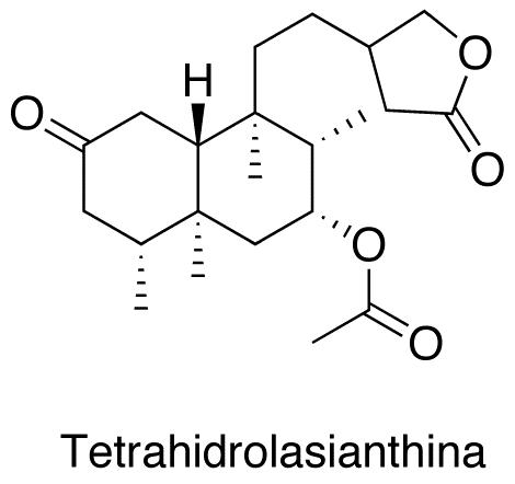 Tetrahidrolasianthina