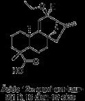 Ácido 12β-Etoxi-ent-kaur-9(11)
