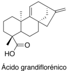 Ácido grandiflorénico