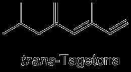 trans-Tagetona