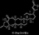 2Gomfosolido