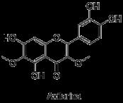 Axilarina