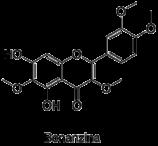 Bonancina